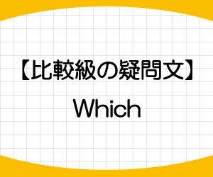 中学英語-比較級-例文-Which-比較表現-疑問文-画像2