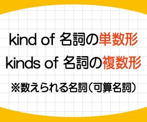 kind-of-kinds-of-違い-what-kind-of-単数-複数-使い方-答え方-例文-画像2