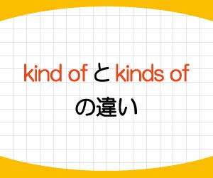 kind-of-kinds-of-違い-what-kind-of-単数-複数-使い方-答え方-例文-画像1