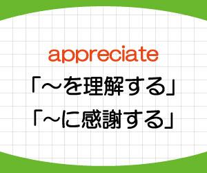 appreciate-意味-使い方-i-would-appreciate-it-if-you-could-例文-画像1