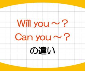 will-you-答え方-Can-you-意味-使い方-違い-例文-画像1