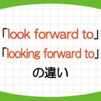 look-forward-to-looking-forward-to-違い-意味-使い方-例文-画像1