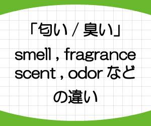 odor-scent-smell-fragrance-違い-英語-におい-意味-使い方-例文-画像1