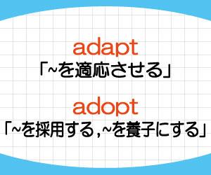 adapt-adopt-違い-覚え方-意味-使い方-例文-画像2