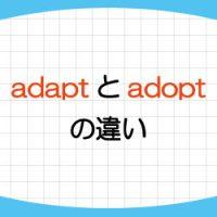 adapt-adopt-違い-覚え方-意味-使い方-例文-画像1