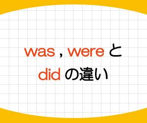 was-were-did-違い-使い分け-画像1
