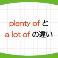 plenty-of-意味-使い方-a-lot-of-違い-例文-可算名詞-画像1