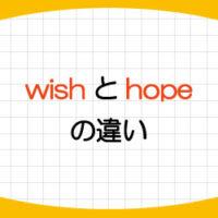 wish-hope-違い-使い分け-意味-使い方-例文-画像1