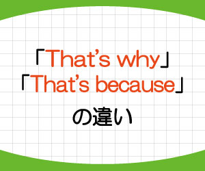 that's-why-that's-because-違い-意味-使い方-例文-画像3