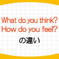 what-do-you-think-how-do-you-feel-違い-意味-使い方-例文-画像1