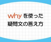 why疑問文の答え方は文頭に「Because~」「To+動詞の原形~」「Well,~」など!その意味と使い方を例文で紹介!