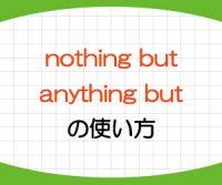 nothing butとanything butの意味と使い方!言い換えを例文で解説!